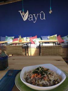 Vayu blog 1
